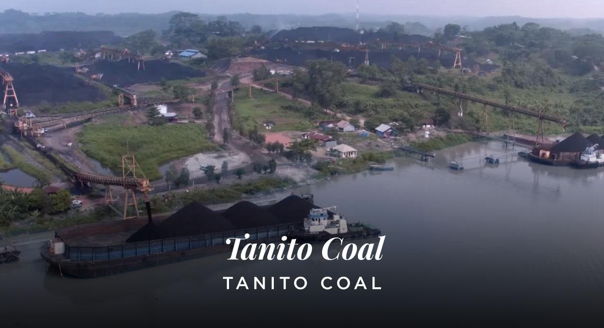 Sinung Winahyoko – Tanito Coal