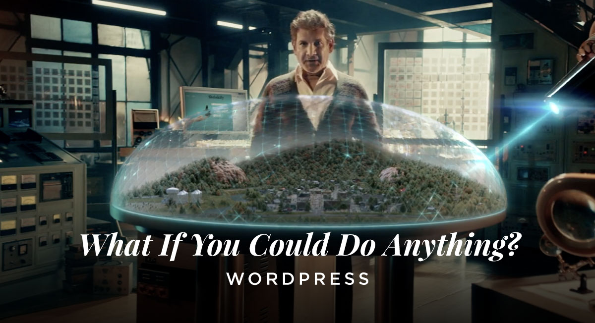 Miguel Campana – WordPress What if you could do anything